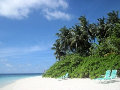 reisebericht madoogali 2011 malediven nord ari atoll. Black Bedroom Furniture Sets. Home Design Ideas